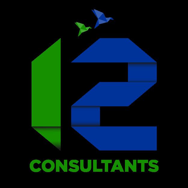 Twelve Consultants